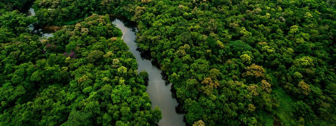 Cómo cuidar el agua, una de las riquezas de Colombia