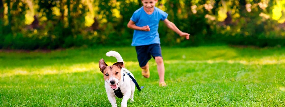 Salir a correr y otros deportes en familia.