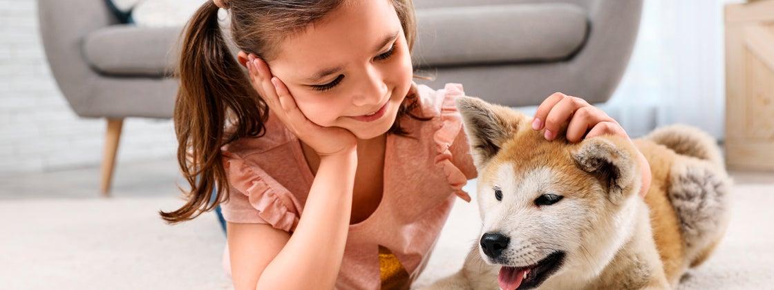 Después de los paseos caninos vienen los beneficios emocionales